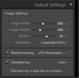 Watermark output Settings